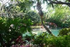 Floride, USA, Orlando, Seaworld