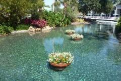 Floride, USA, Orlando, Seaworld, joli bassin