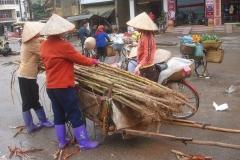Vietnam, vendeuses de cannes à sucre