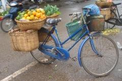 Vietnam, vente de fruits sur un vélo