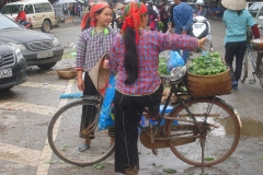 Vietnam, vendeuses d'herbes aromatiques