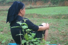 Vietnam, femme vietnamienne