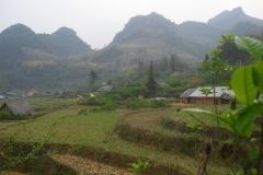 Vietnam, Laos, rizières en terrasses