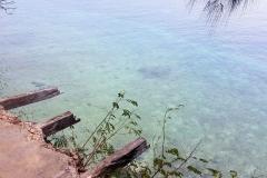 Zanzibar - Prison island