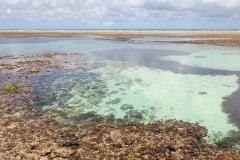 Zanzibar - Jambiani - lagon bleu