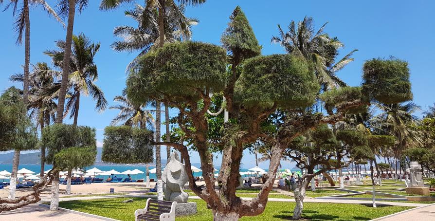 Nha Trang plage Vietnam jardins