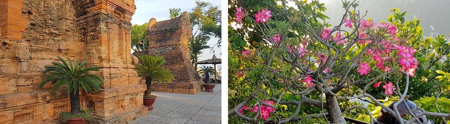 Po Nagar Nha Trang Vietnam