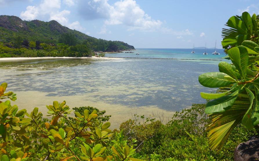 Turtle pond ile Curieuse Seychelles