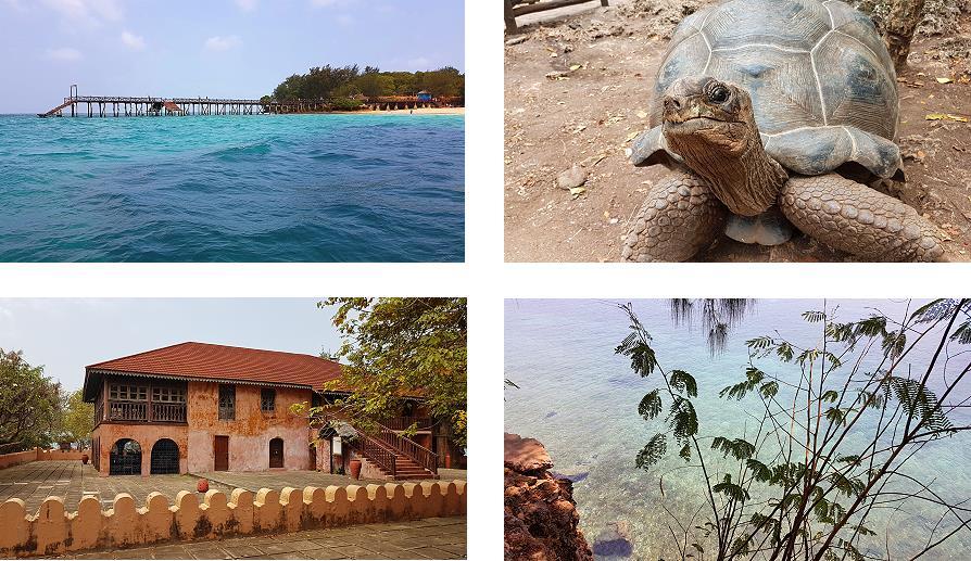 Prison island Changuu Zanzibar