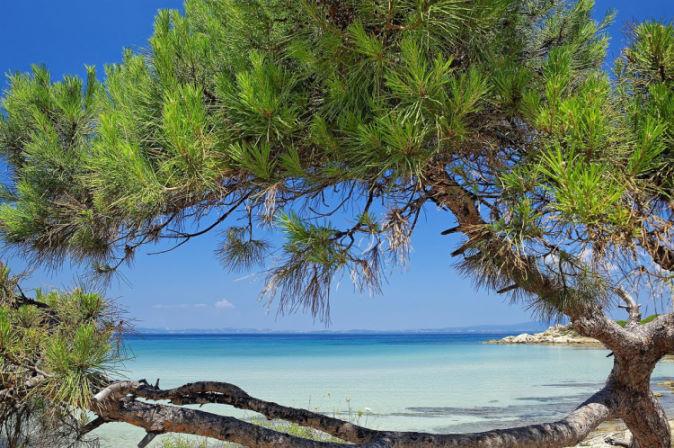 Belle plage de Kassandra, Halkidiki en Grèce